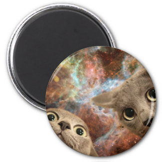 Two Gray Cats in Space Before a Nebula Magnet