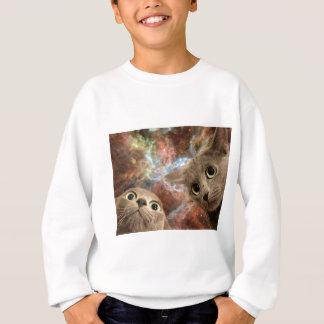 Two Gray Cats in Space Before a Nebula Sweatshirt