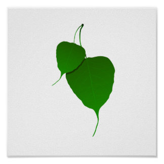 Two green leaves and stems eco image.png poster