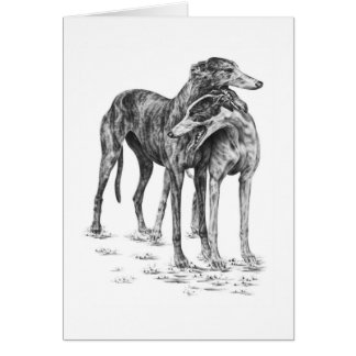 Two Greyhound Dogs Drawing by Kelli Swan Card