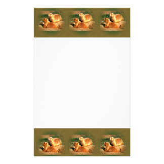 Two Groundhogs Coming Out On Groundhogs Day Custom Stationery