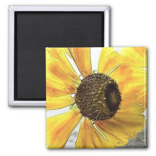 Two Happy-Faced Helenium Flowers Magnets
