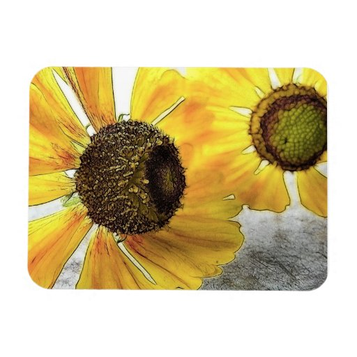 Two Happy-Faced Helenium Flowers Flexible Magnets