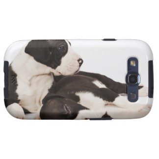 Two Harlequin Great Dane puppies on white Galaxy S3 Cover