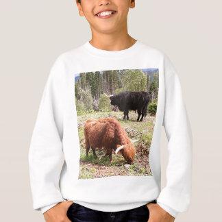 Two highland cattle, Scotland Sweatshirt