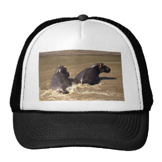 Two hippos trucker hat