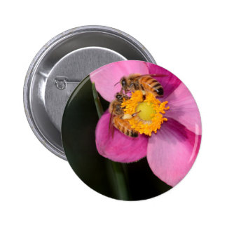 Two Honey Bees on a Pink Flower 6 Cm Round Badge