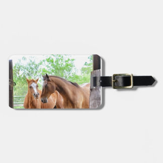 Two horse friends luggage tag
