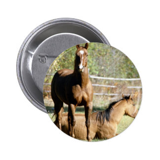 Two Horses at Pasture 6 Cm Round Badge