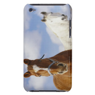 Two Horses Barely There iPod Cover