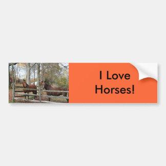 Two Horses! Bumper Sticker