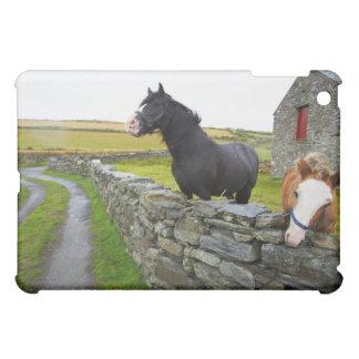 Two horses on farm in rural England iPad Mini Case