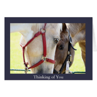 Two Horses Thinking of You Greeting Card