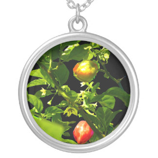 two hot peppers green foliage black back.jpg silver plated necklace