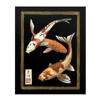 Two Japanese Koi Goldfish on Black Background Acrylic Print