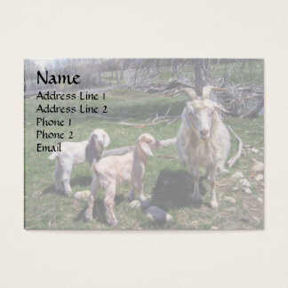 Two Kids Funny Nanny Business Card