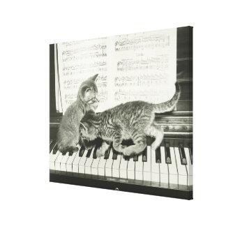 Two kitten playing on piano keyboard, (B&W) Canvas Print