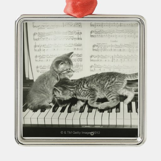 Two kitten playing on piano keyboard, (B&W) Christmas Tree Ornaments