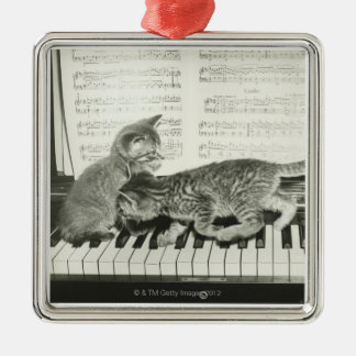 Two kitten playing on piano keyboard B W Christmas Tree Ornaments