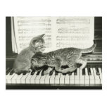 Two kitten playing on piano keyboard, (B&W) Postcard