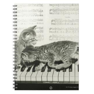 Two kitten playing on piano keyboard, (B&W) Spiral Notebook