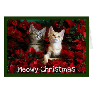 Two Kittens and Poinsettias Card
