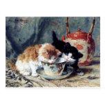 Two kittens having tea party postcard