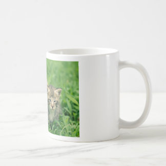 Two kittens playing in the grass coffee mugs