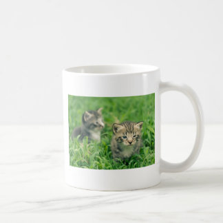 Two kittens playing in the grass mug