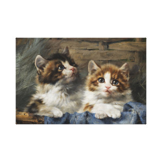 Two Kittens Stretched Canvas Print