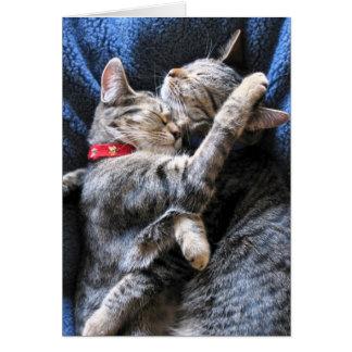Two Kitties Card