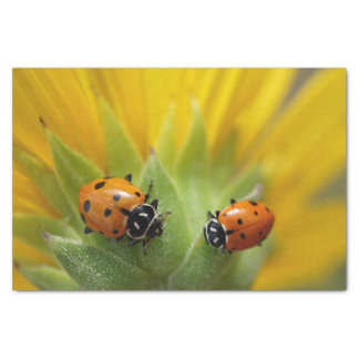 Two Lady Bugs on a Sunflower Tissue Paper