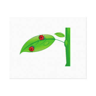 Two ladybugs on green leaf stem eco design.png gallery wrapped canvas
