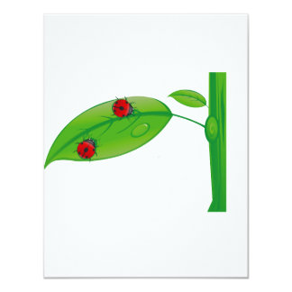 Two ladybugs on green leaf stem eco design.png announcement