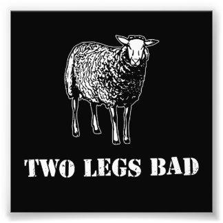 Two Legs Bad Sheep Photo Art