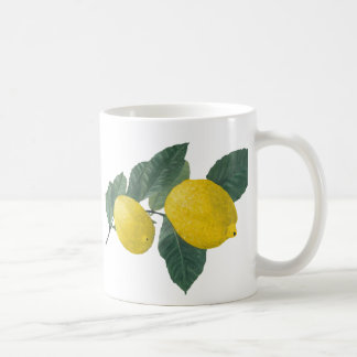 Two lemons on a branch. Oil painting. Mug