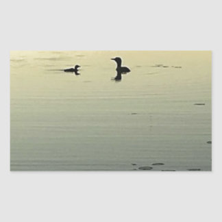 Two loons rectangular sticker