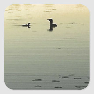 Two loons square sticker