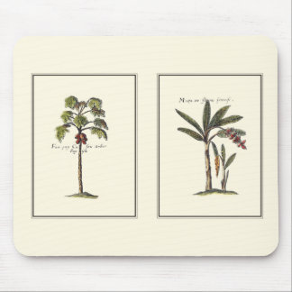 Two Miniature Framed Palm Trees Mouse Pad