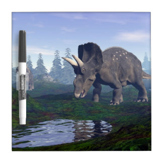 Two nedoceratops/diceratops dinosaurs walking dry erase board