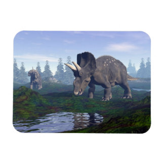 Two nedoceratops/diceratops dinosaurs walking magnet