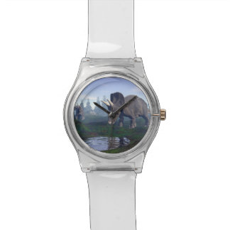 Two nedoceratops/diceratops dinosaurs walking watch