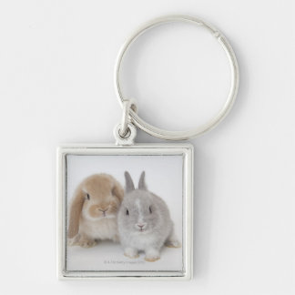 Two Netherland Dwarf and Holland Lop bunnies Key Ring