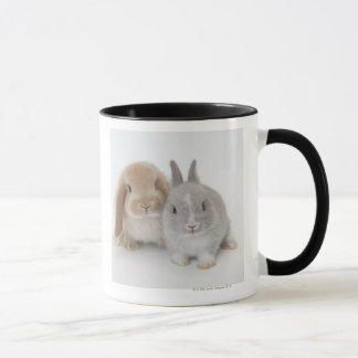 Two Netherland Dwarf and Holland Lop Bunnies Mug