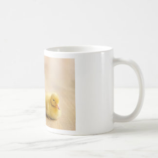 Two newborn yellow ducklings on wooden floor coffee mug