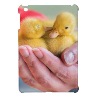 Two newborn yellow ducklings sitting on hand case for the iPad mini