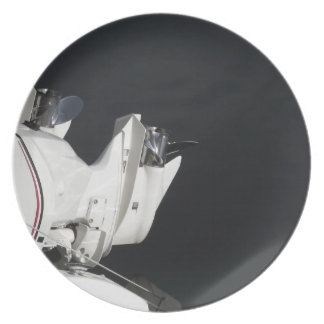 Two outboard boat motors party plate