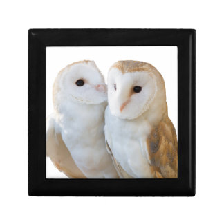 two owls friends gift box