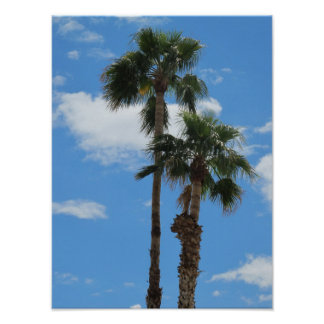 Two Palm Trees in Arizona Print