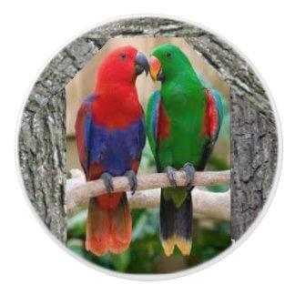 Two parrots on a ceramic door knob and door pulls.